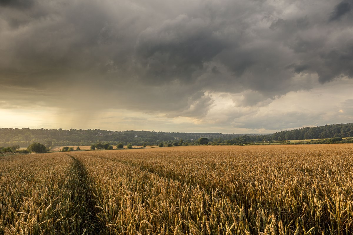 Harrogate Skies Summer  Dark clouds over the Crimple Valley photo