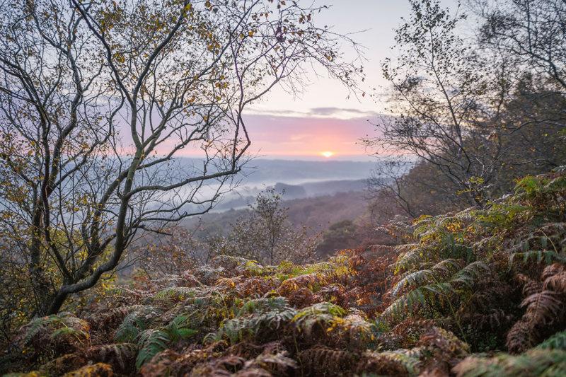 Autumn sunrise on the edge
