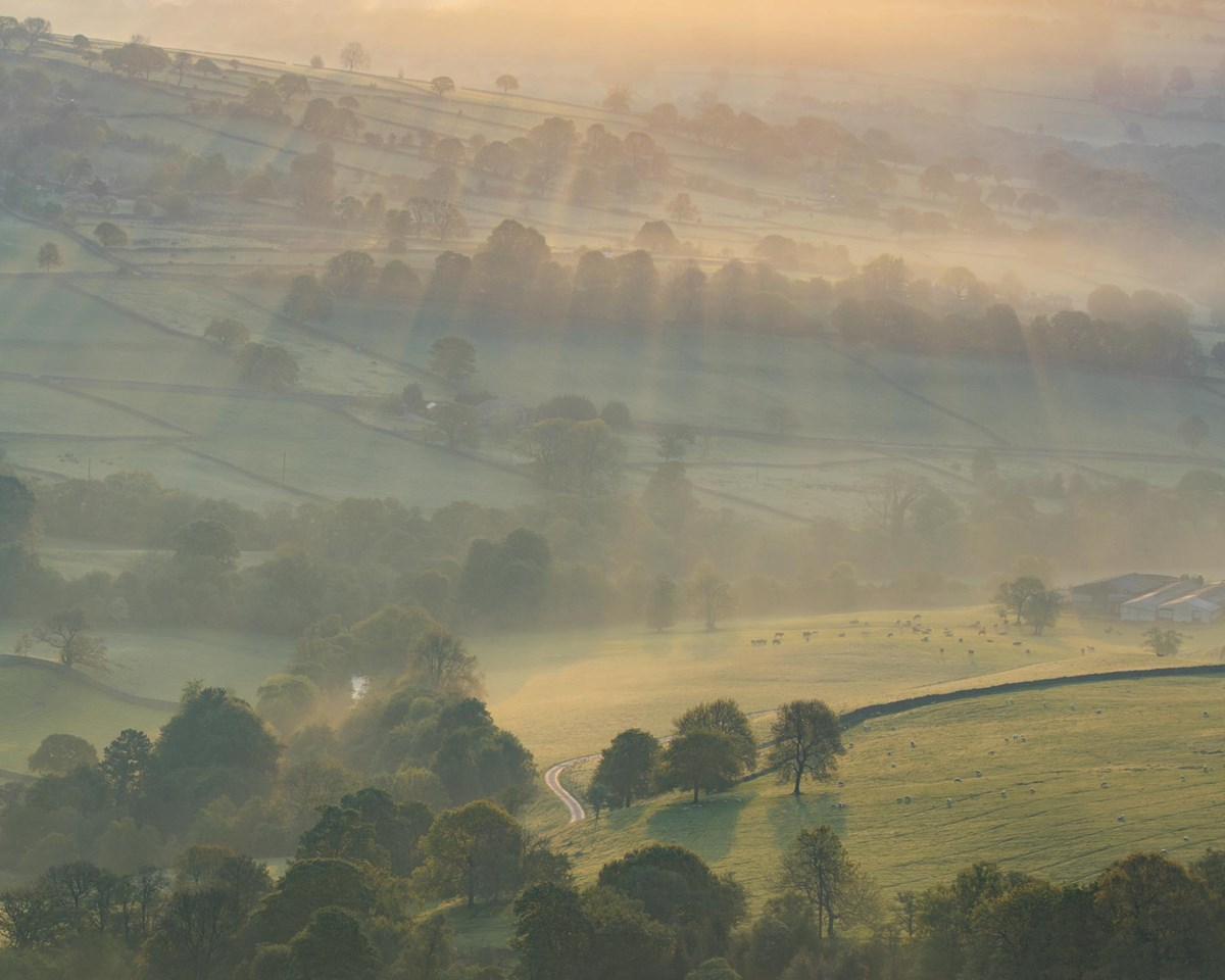 Nidderdale Spring Mist  Late Spring Mists photo