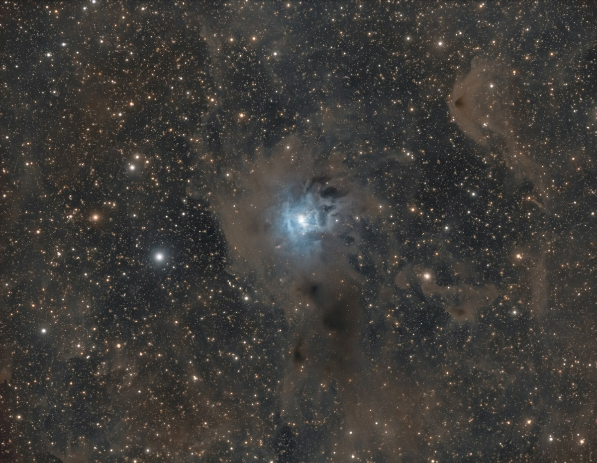 Astrophotography  The Iris Nebula photo