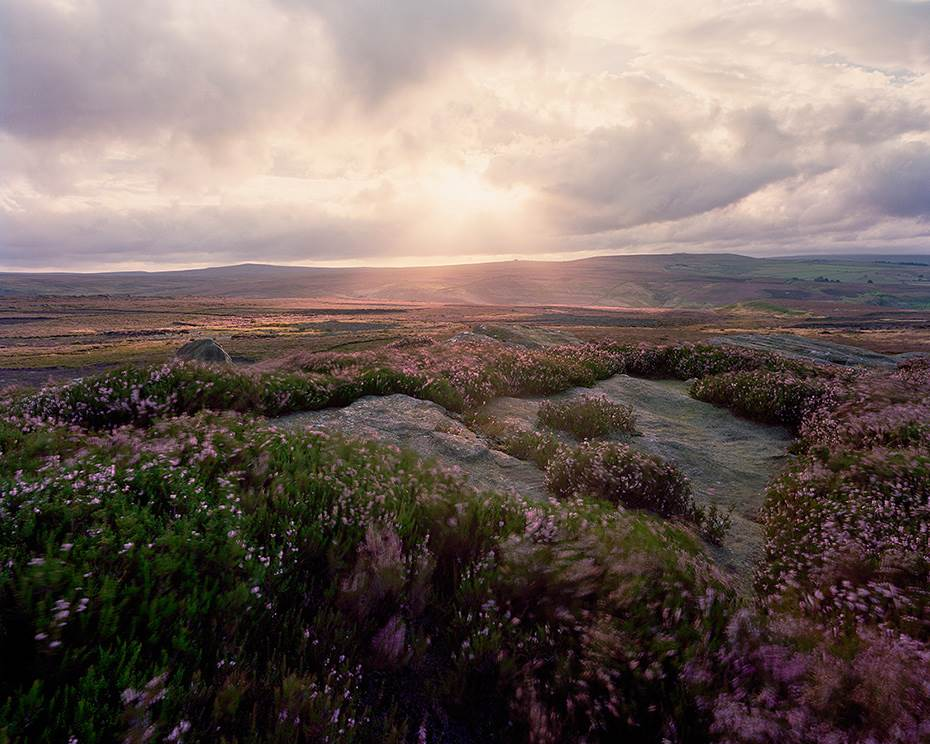 Fast moving light creates god rays shining over the colourful heather moorlands of North Yorkshire