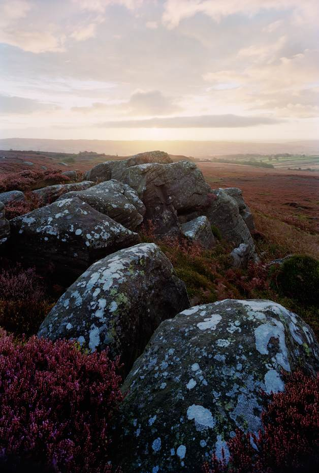 Moorland heather and rocks