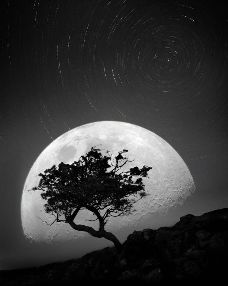 Dancing with the moonlight night